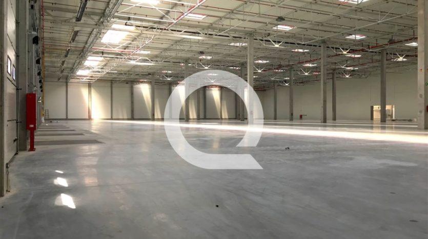 Hala na wynajem 12 300 m2