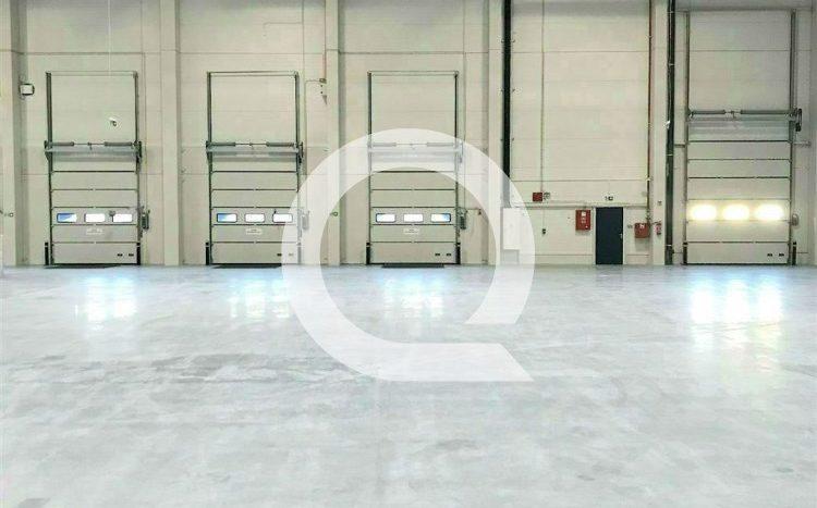 Halana wynajem 1 620 m2